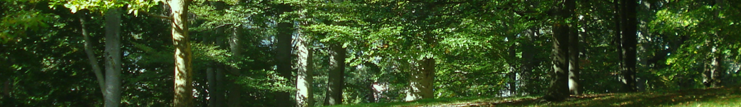 Hegering Ahaus-Heek e.V.